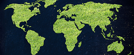 Promozione della Green Economy con la legge n. 221